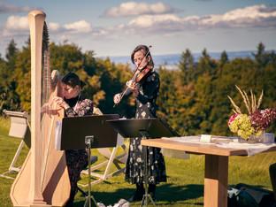 Harfe-Geige.jpeg