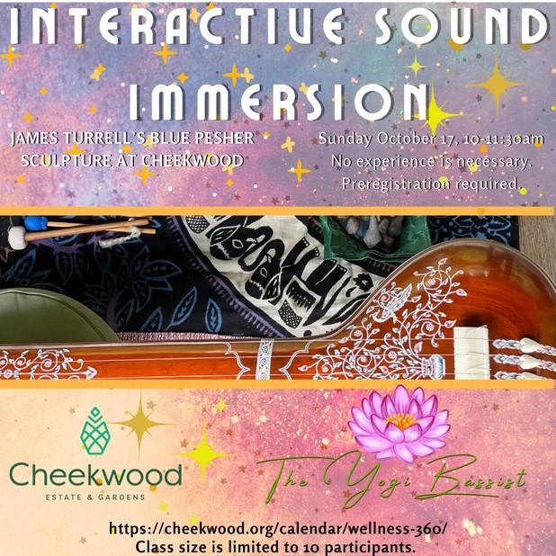 Interactive Sound Immersion