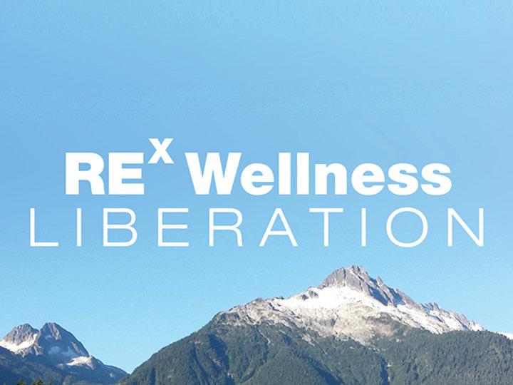 Rex Wellness Logo Brand Development by designsparkz