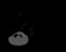 Logo LiquidVix LiquidPix