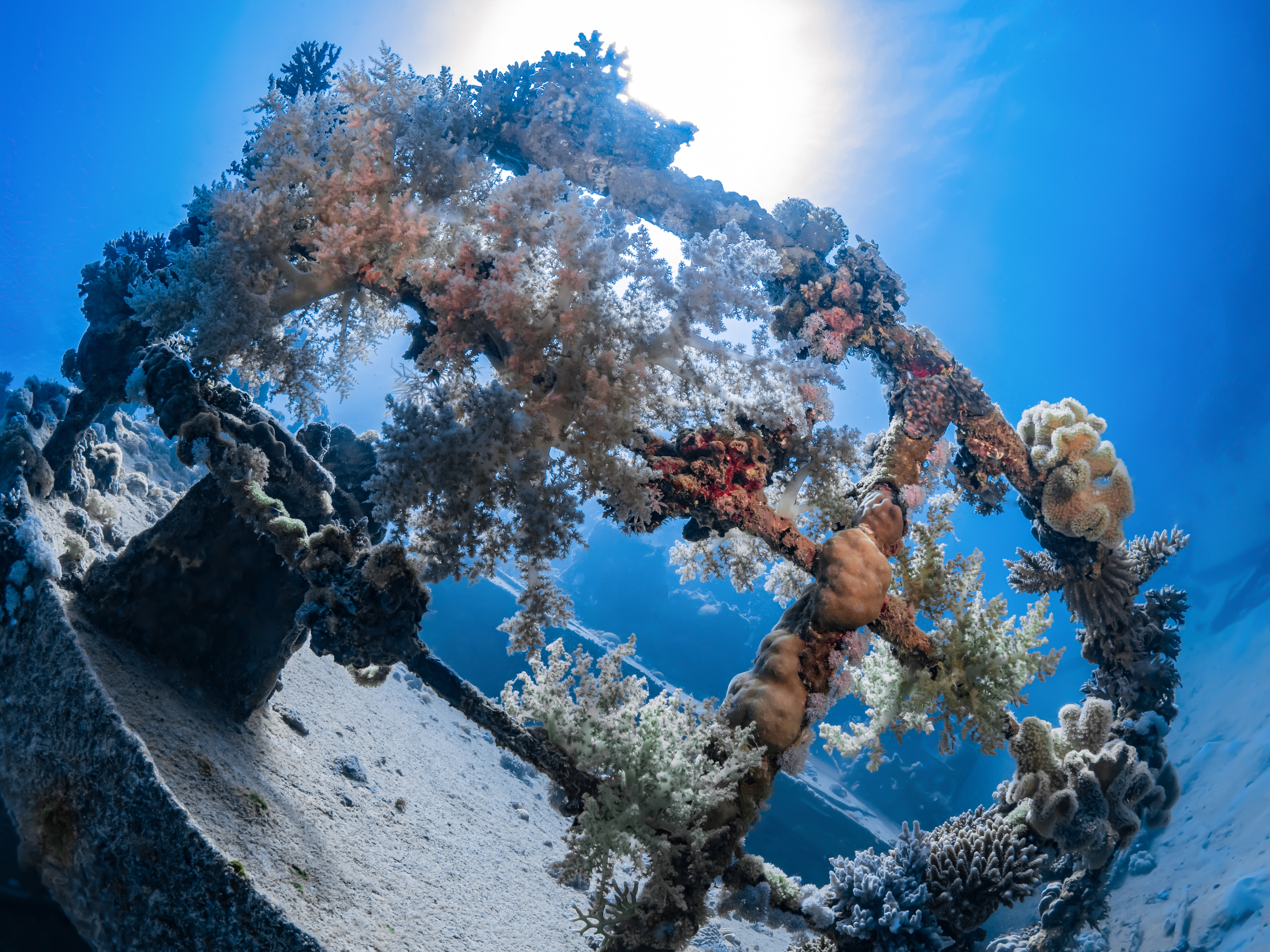 Epave Mer Rouge