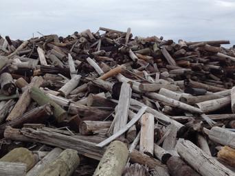 Verizon Utility Poles and Railroad Ties Illegally Dumped On Farm