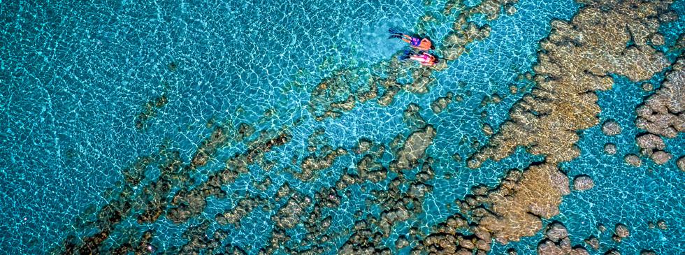 Stromatolite Adventure