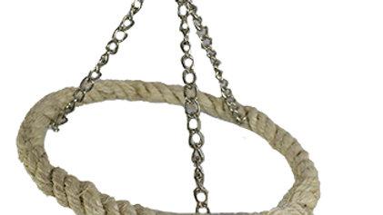 Ring Rope Swing