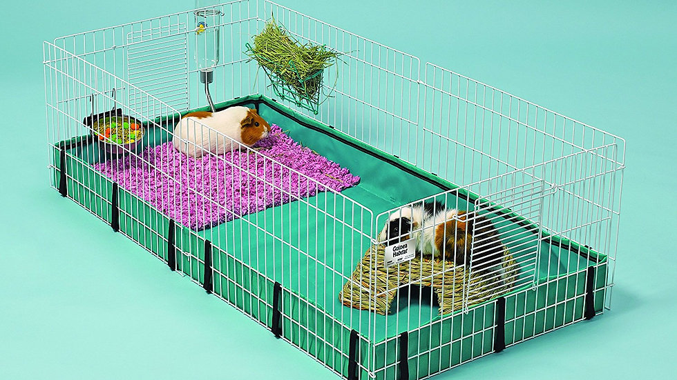 Open-Top Critter Cage