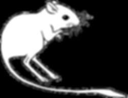 k-rat.png