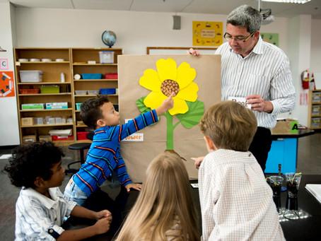 A exploração das culturas letradas na Educação Infantil e no Ensino Fundamental