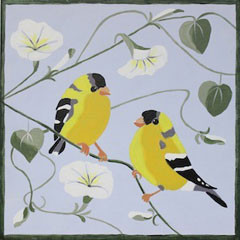 Finches & Morning Glories