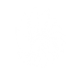 FLARE CREATIONS LOGO Outline White copy.png