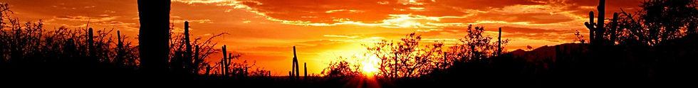 Solution Mindfulness Scottsdale Phoenix Arizona Meditation Classes Workshops Retreats MBSR Continuing Education CE