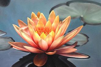 Mindfulness Vipassana Meditation Scottsdale Arizona Retreats