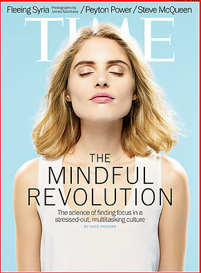 Solution Mindfulness Scottsdale Phoenix Arizona Meditation Classes Workshops Retreats MBSR