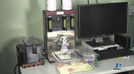 Perkin-Elmer IVIS Lumina Series III Pre-clinical In Vivo Animal Imaging Systems