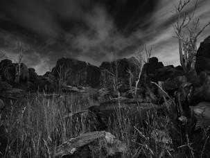 Desolation Land
