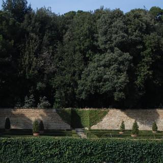 Il giardino e il bosco
