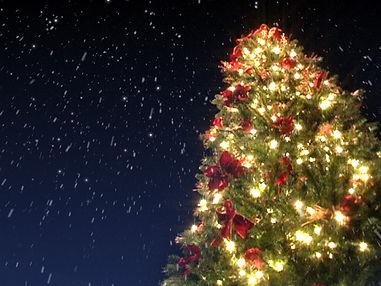 ChristmasTreeSnow.jpg