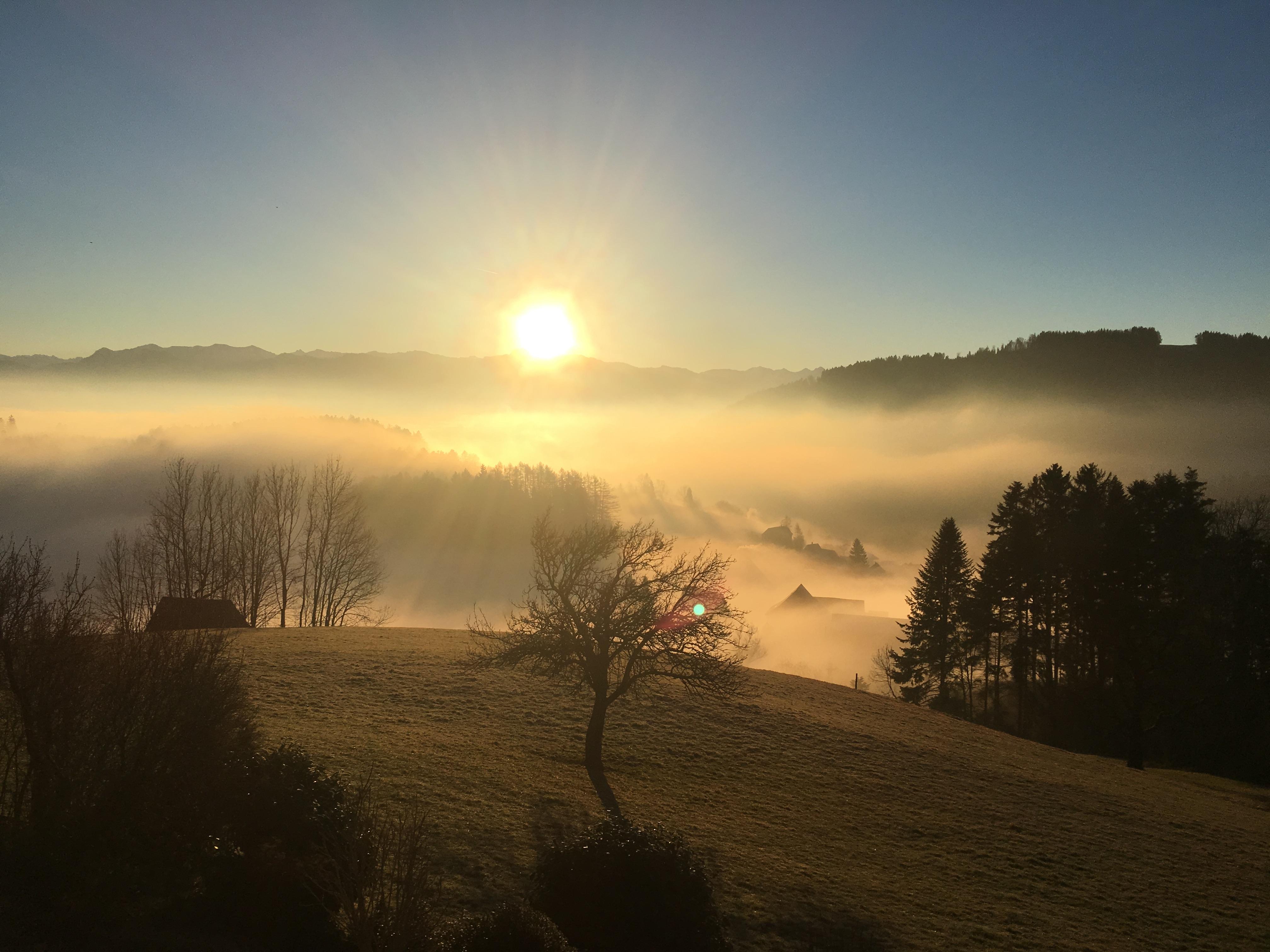 Nebelmeer im November