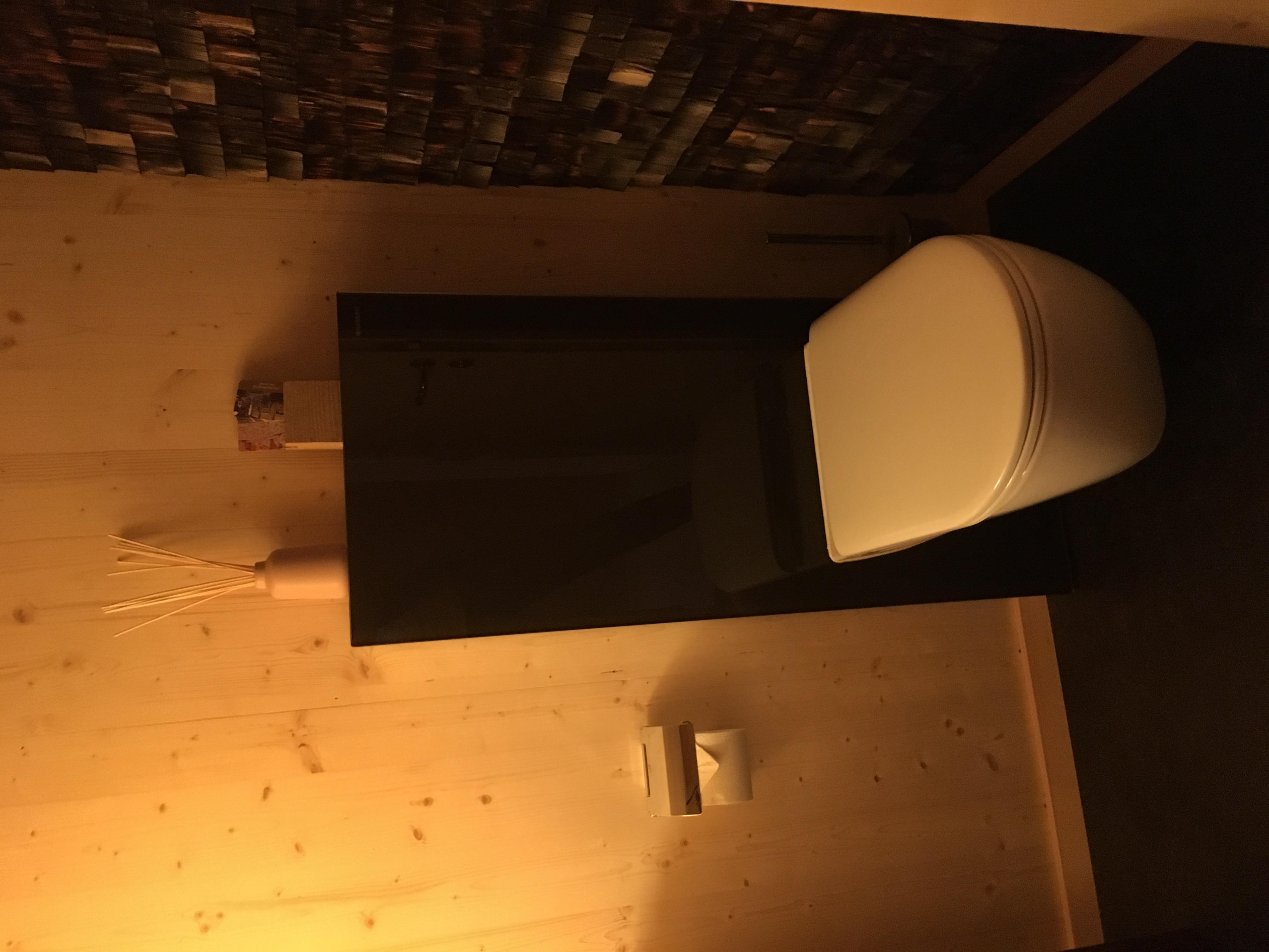Gäste-WC mit alten Schindeln