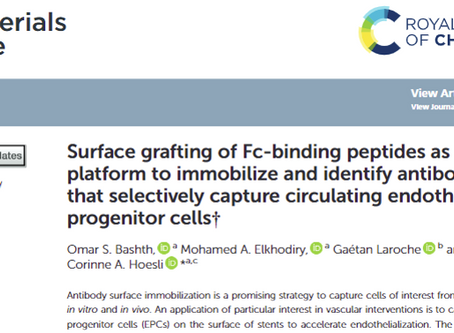 Publication: Surface grafting of Fc-binding peptides as a simple platform to immobilize and identify