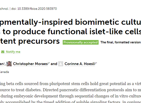 Publication: Developmentally-inspired biomimetic culture models to produce functional islet-like...