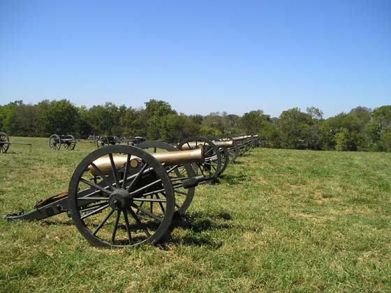 Row of cannons.JPG