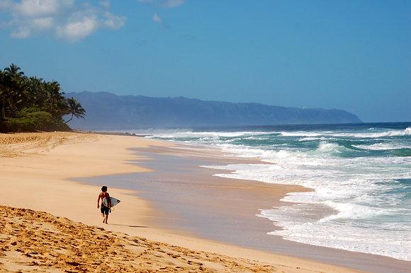 Beach Life 74