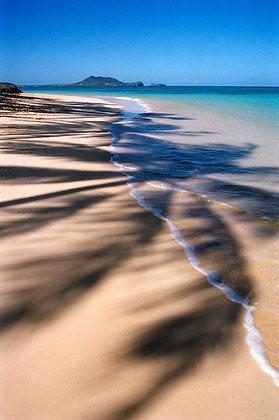 Beach Life 68
