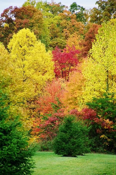 2006-10-29_0028.jpeg