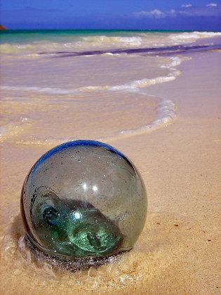 Beach Life 24