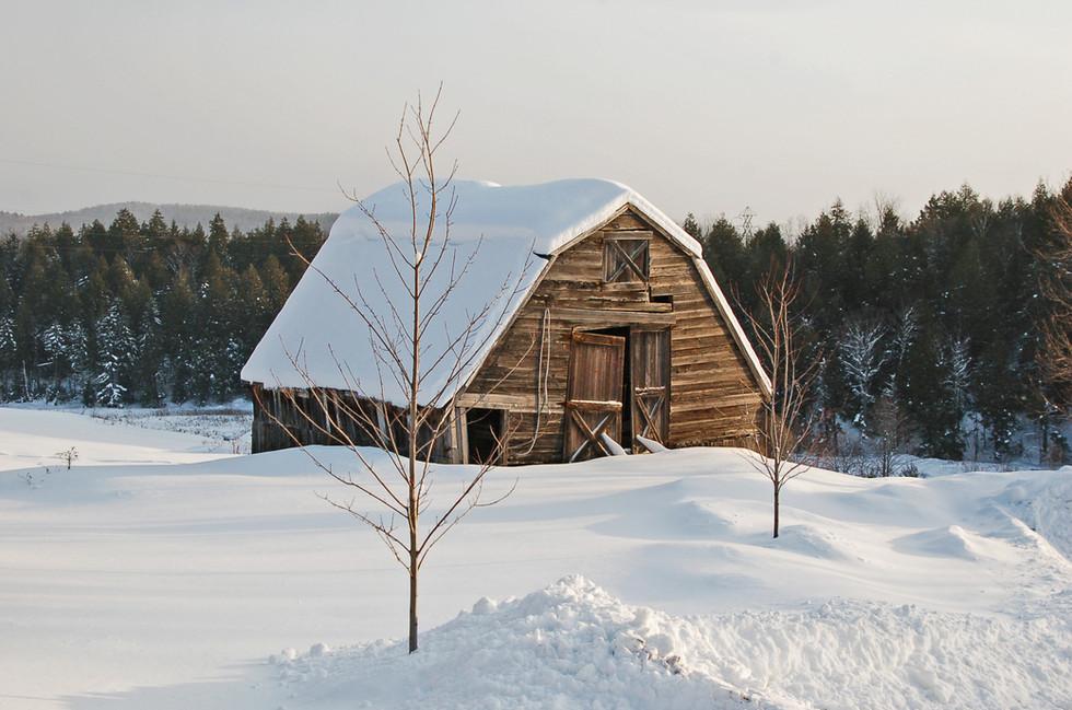 brightened brown barn & snow.jpeg