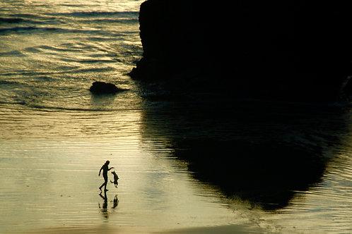 Beach Life 41