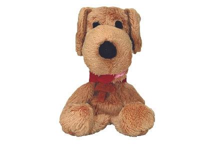 Pavlov's Dog Magnetic Personality