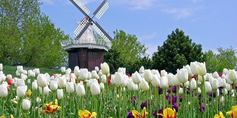 85th Annual Tulip Time Festival Trip