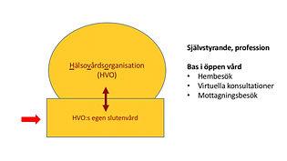 HVO 2.jpg