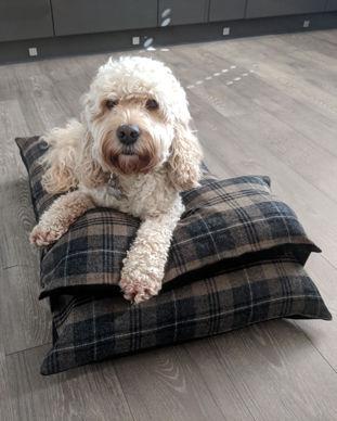 Brown check luxury dog bed cockapoo.jpg