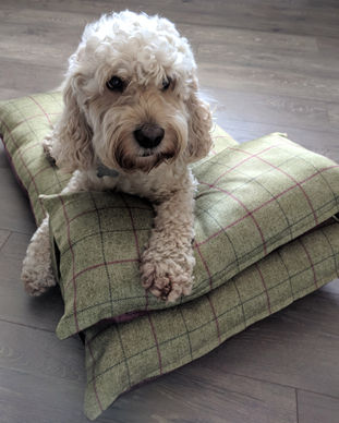 Grean and mulberry check dog bed with co