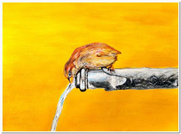 Moineau à la fontaine - Acrylique sur toile 40 x 30