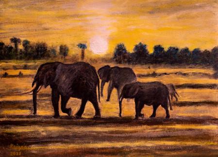 La marche des éléphants - CS8221 - Acrylique 40 x 30