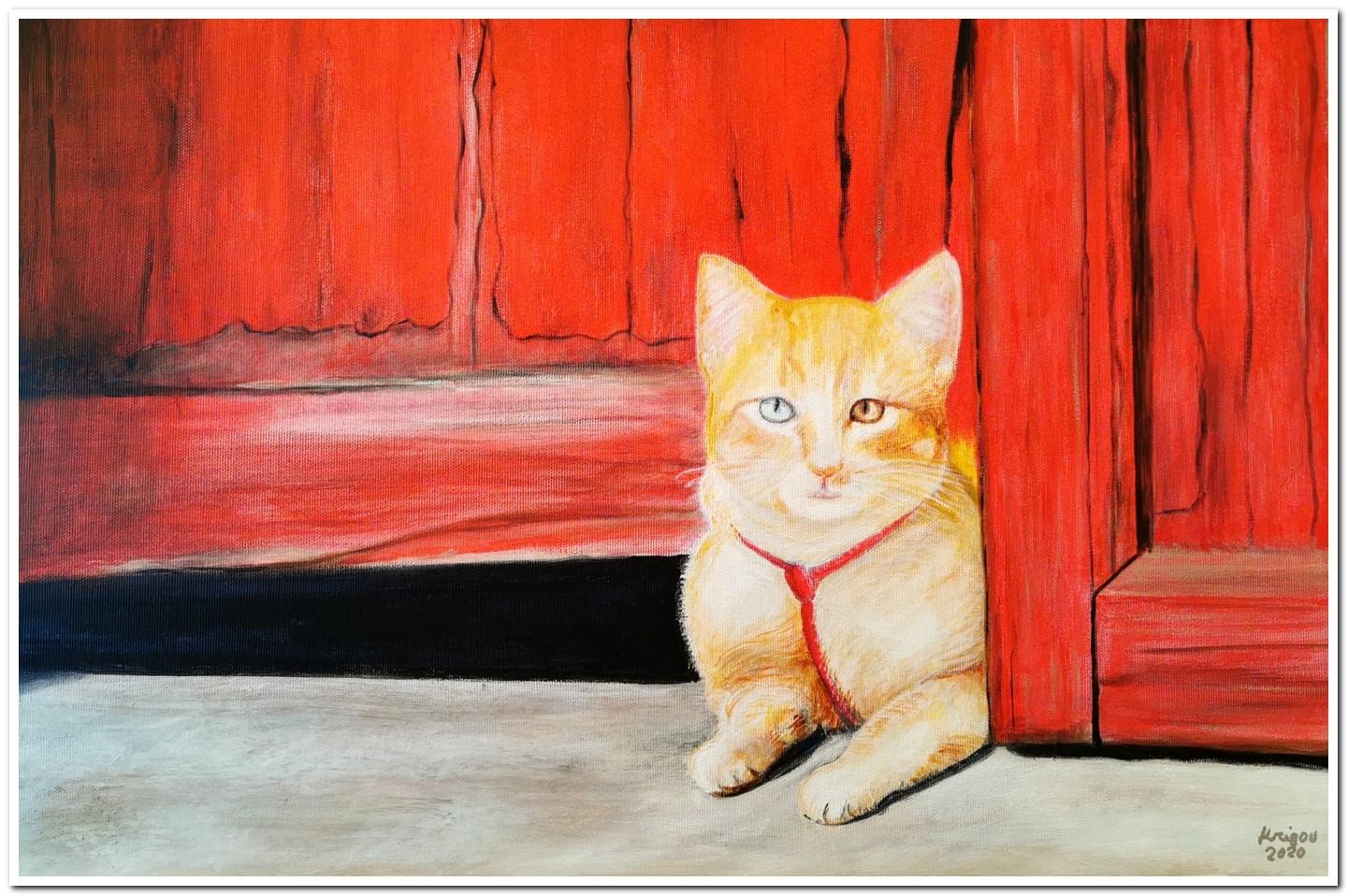 Petit chat aux yeux bicolores - Acrylique sur toile 60 x 40