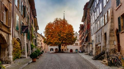 Altstadt Biel - Rue Haute Lumi2 with log