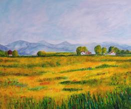 Un petit air de Provence - CS7321 - Acrylique 60 x 50