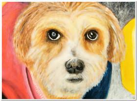 Portrait d'une petite chienne bolivienne prénommée Nena - Acrylique 40 x 30