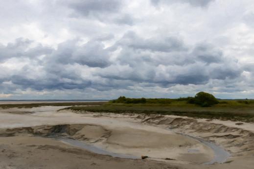 Dans la baie de Somme - Mai 2019.jpg