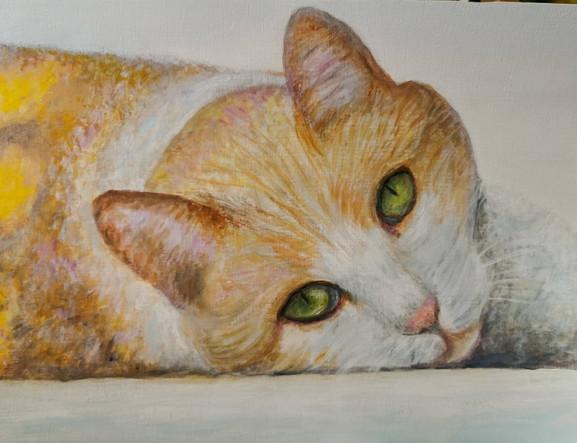 Portrait de chat - Acrylique 40 x 30