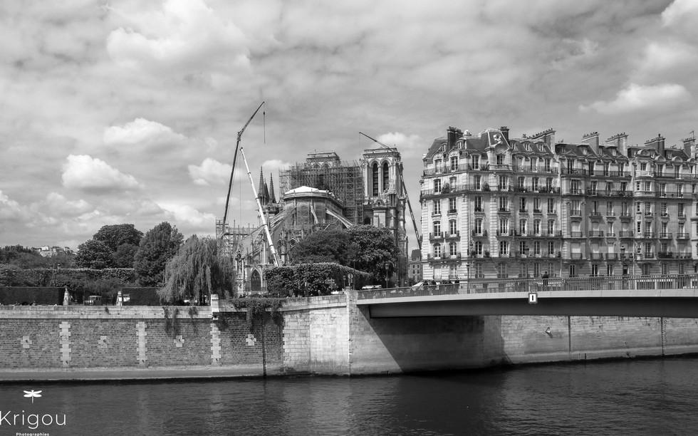 Seine et Notre-Dame avec logo NB.jpg
