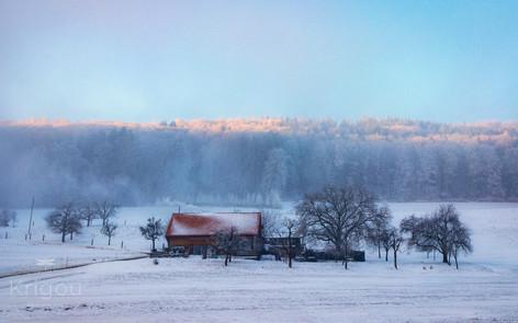Ferme dans la neige - Frienisberg with l