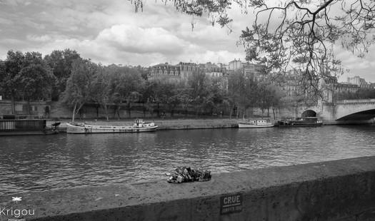 Au bord de la Seine - Les cadenas with l
