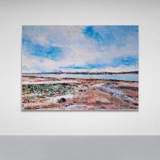 Large_wall_in_minimal_gallery (23).jpg