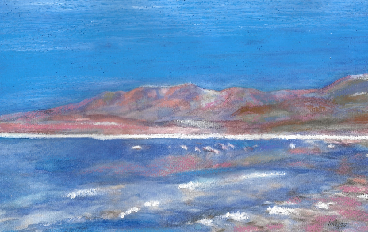 Lagune avec flamands - A4