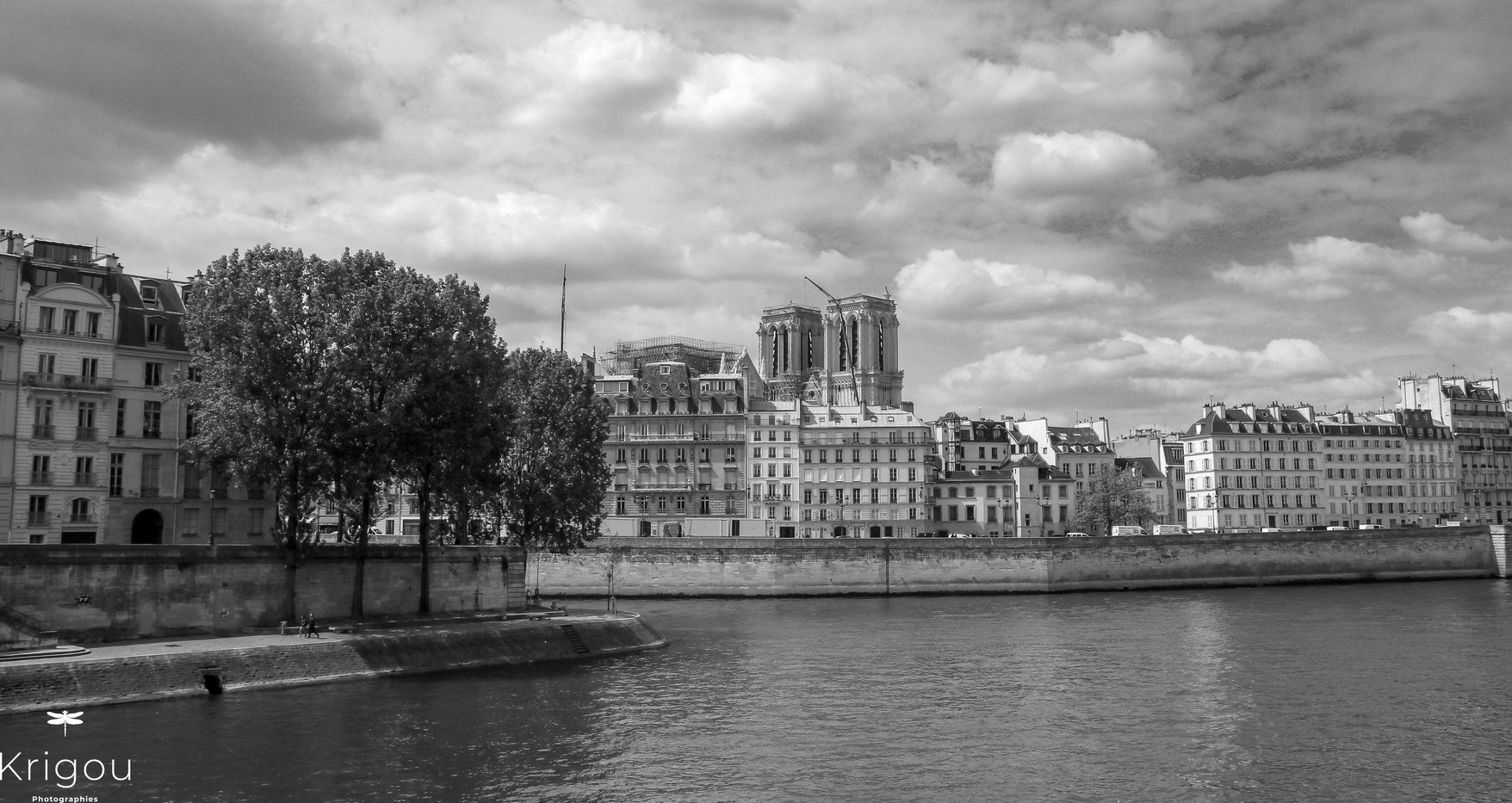 Paris_-_Pointe_de_l'île_Saint-Louis_ave